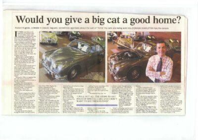 Irish Times Circa 2003 – Would you give a cat a good home?